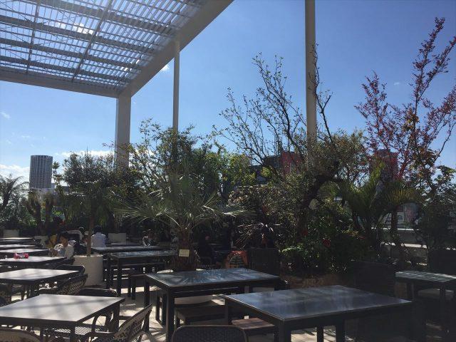 多くの樹木が並んだビルの屋上テラスでくつろぐ人々