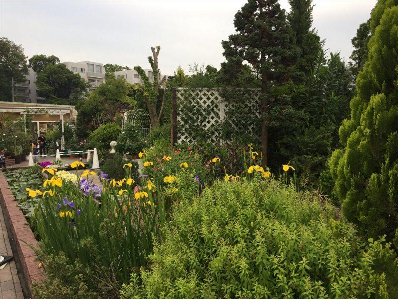 ビルの屋外のガーデンに草花がいっぱい植栽された花壇と樹木