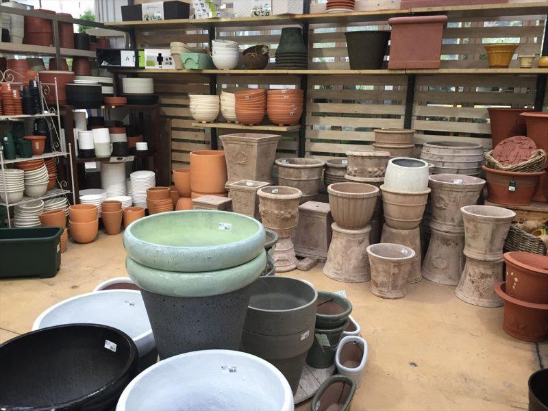 店内に様々な形や色の中型から大型鉢植えが山になって置いてある