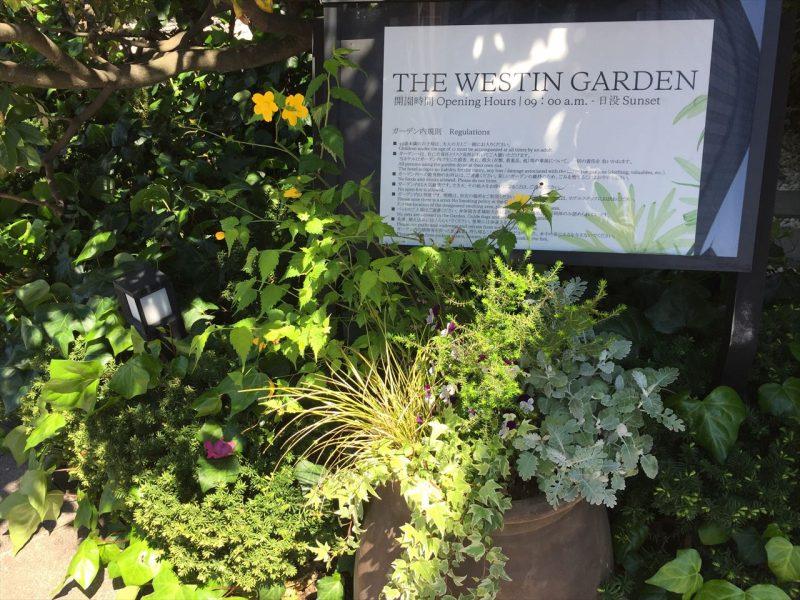 鉢植えで飾られたウェスティンガーデンの白い看板
