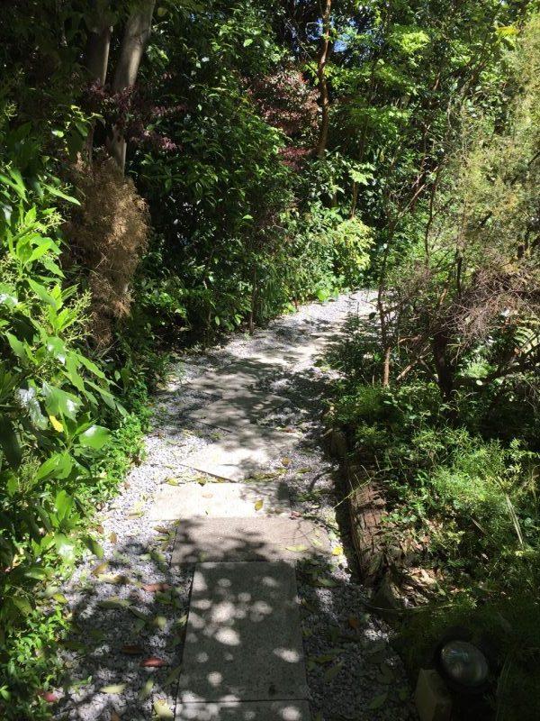 樹木が生い茂る砂利の小道