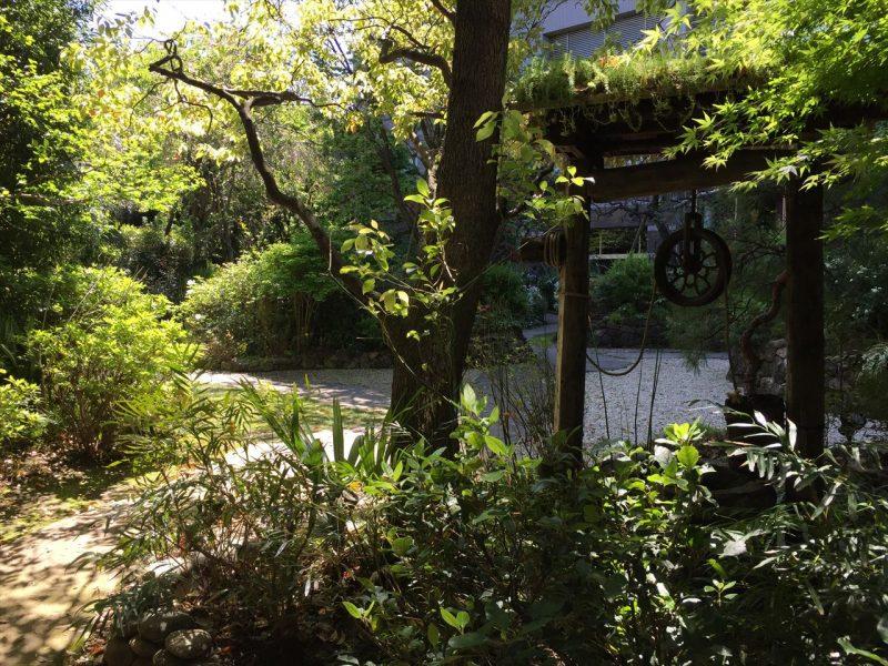 松を始めといた和風な植栽と井戸
