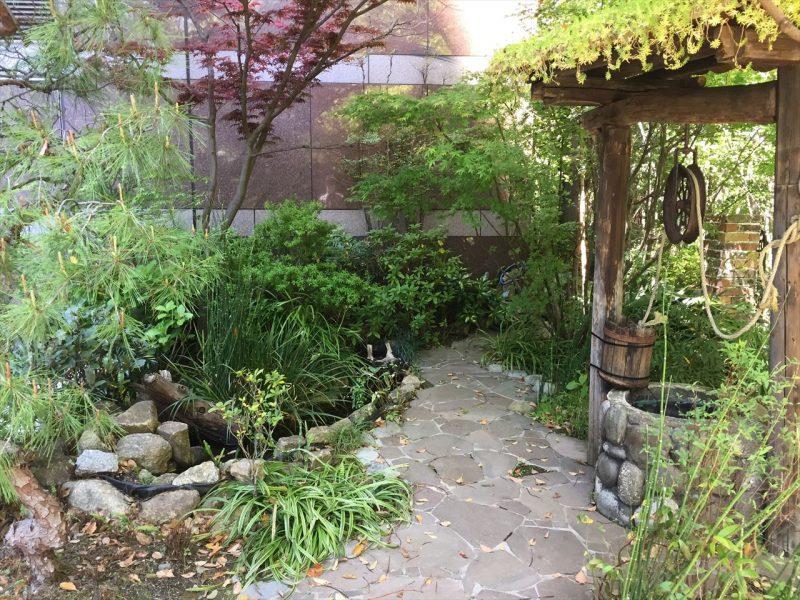 和風な佇まいの池と苔と井戸