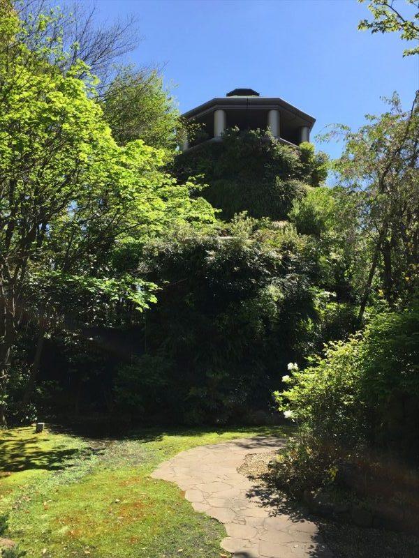 木々が生い茂る奥にそびえ立つ壁面緑化が施されたタワー