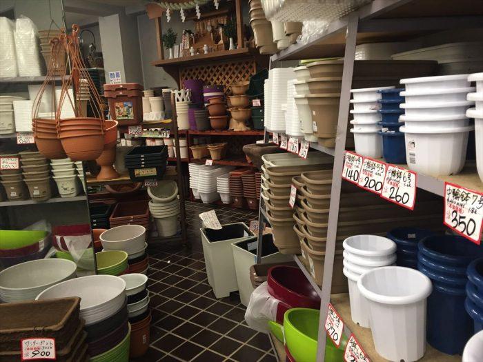 東横園芸の棚に所せましと置かれている商品の植木鉢