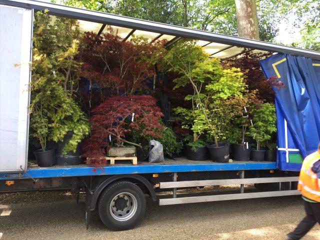 トラックの荷台に多くの植物が満載