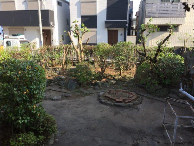 樹木を剪定したさっぱりした庭