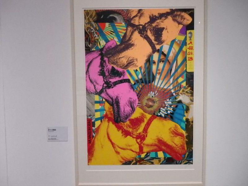 女性と三頭の駱駝がデザインされたカラフルな版画