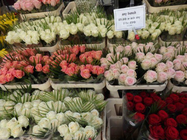 白、ピンク、赤のバラが並ぶ店先