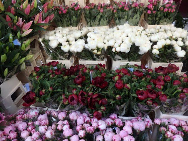 白、赤、ピンクの切り花が店先に並んでいる