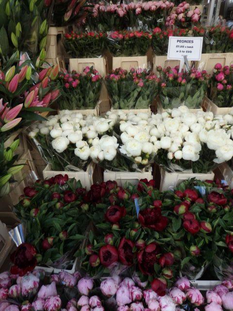 ロンドンの花市で売られる旬の芍薬