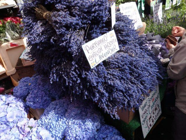 ロンドンの花屋の店先に並べられたラベンダー