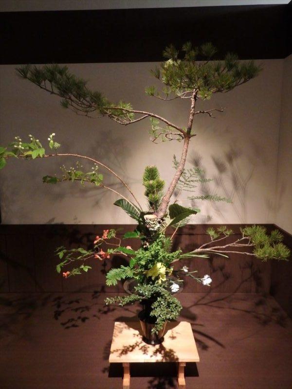 大型の花器に生けられた松を始めとする植物