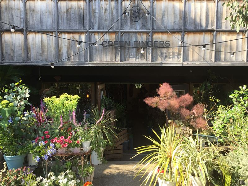 三軒茶屋で人気の園芸店