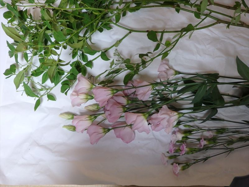 いけばなに使う夏の花材