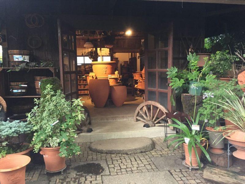 日本最大級のウィッチフォードの鉢売り場