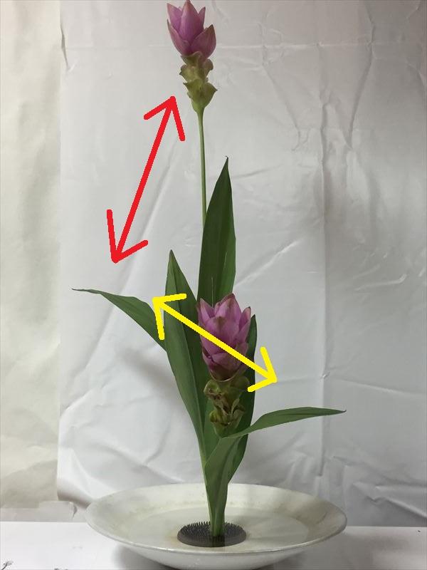 生花の説明