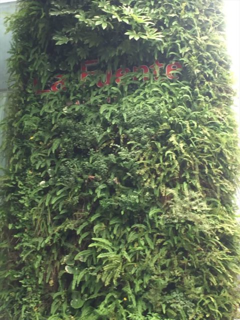 人気スポットある石原和幸デザインの壁面緑化
