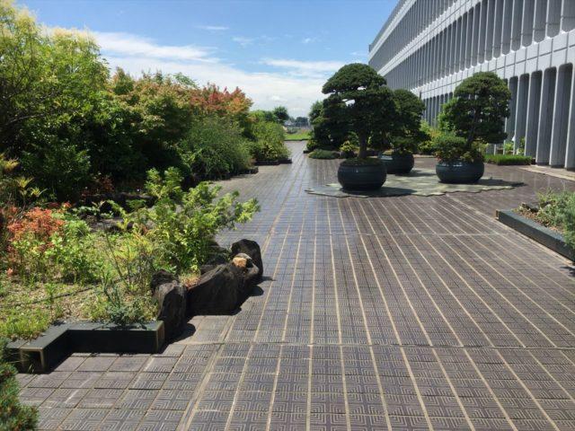 広々とした感じがとても気持ちいい庭園