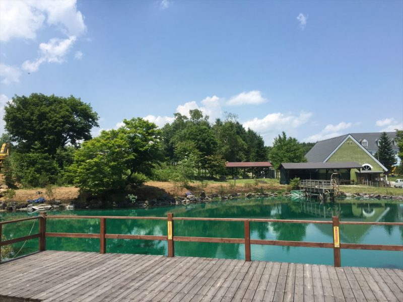 池の周りの植栽