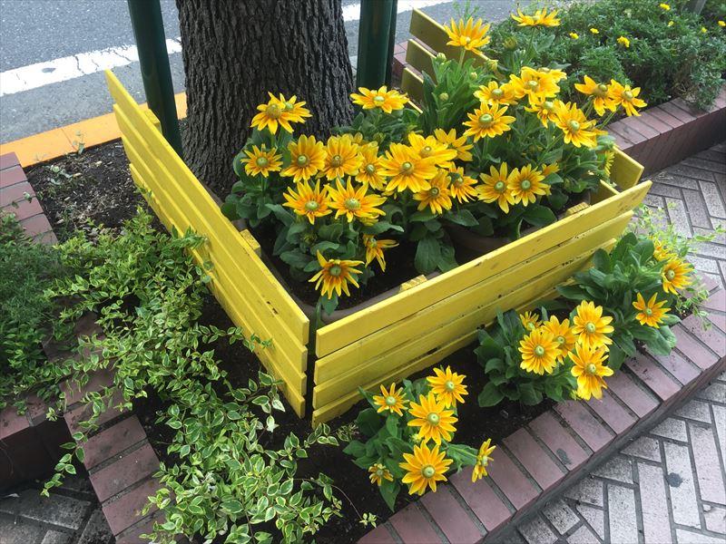 テーマが黄色の花壇