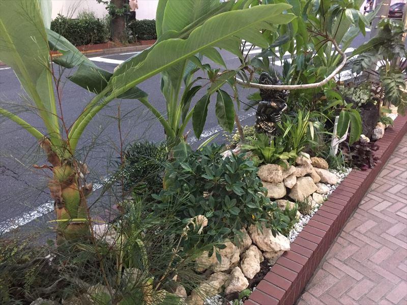 賞を獲得した庭の一部