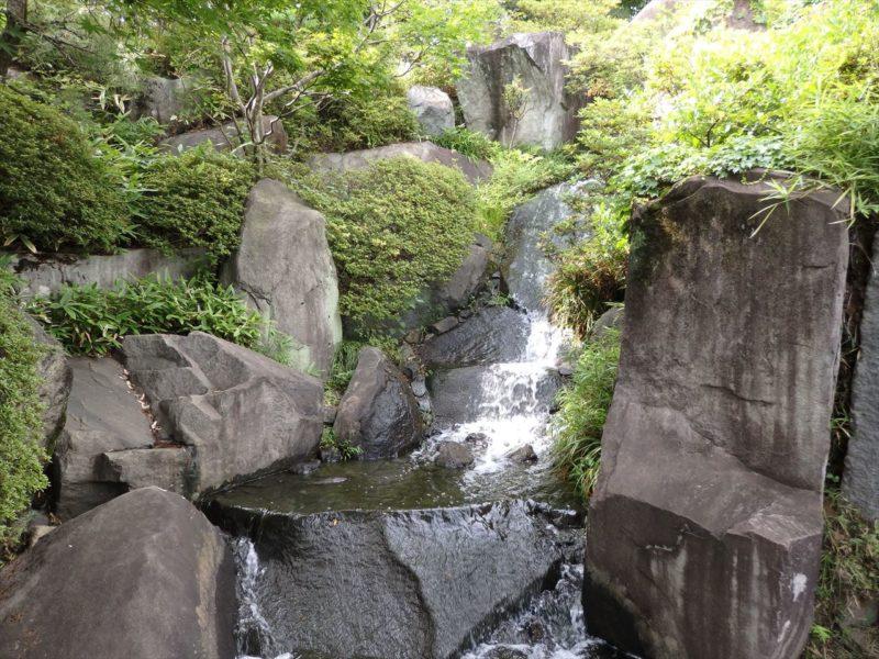 目白庭園の滝