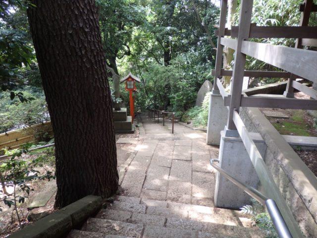 等々力渓谷へ続く急な階段