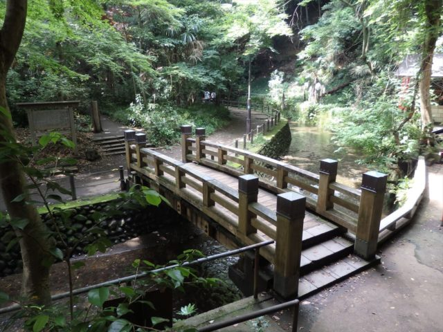 渓谷を流れる川を渡す橋