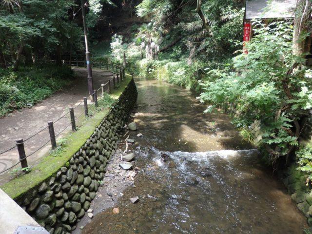橋の上から撮った川の流れ