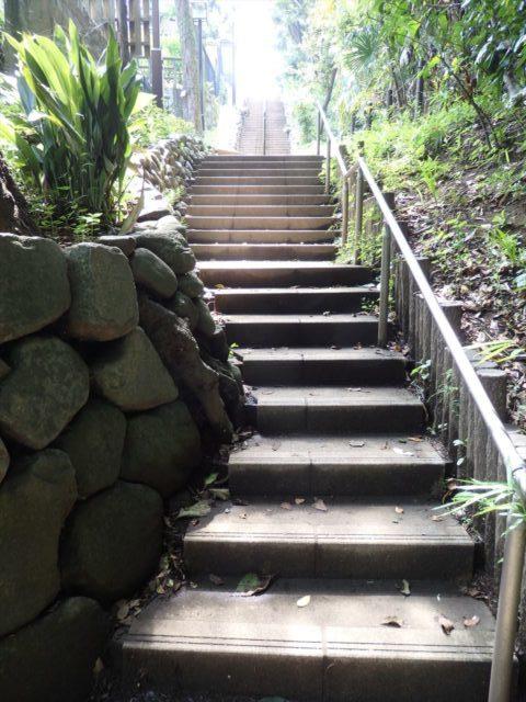 本堂と反対の渓谷を登って行く階段