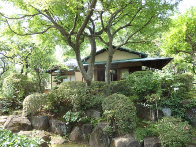 等々力渓谷内にある日本庭園