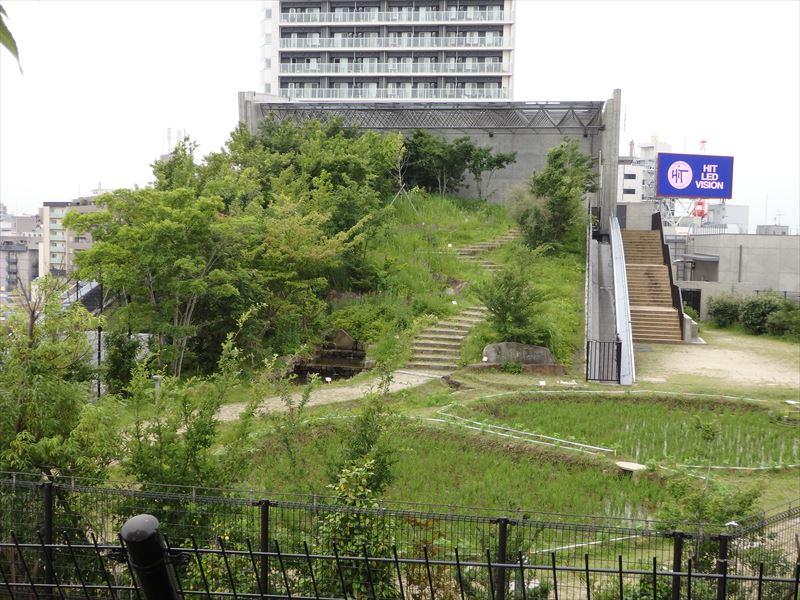 立入禁止の庭園