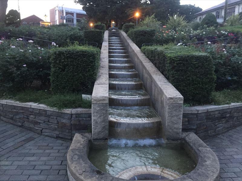 水が豊富が庭