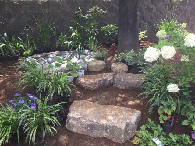 植栽によって一気に雰囲気が変わる庭