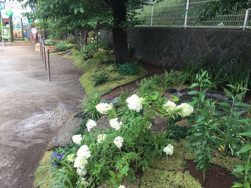 端っこから見た庭