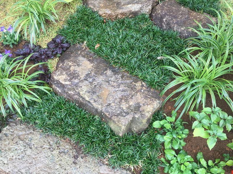 とても良い石の周りの植栽