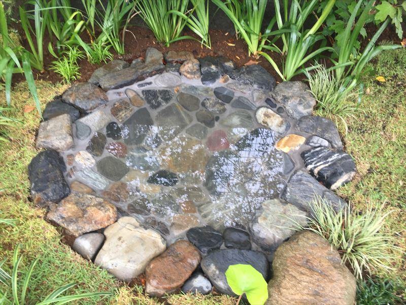 水がゆっくり抜けていく池