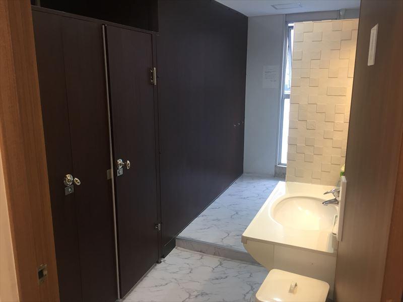 エコカラットのパネルを活かしたラグジュアリーなトイレ