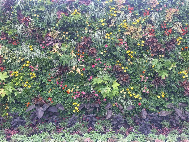 お花が植栽された巨大な壁面緑化
