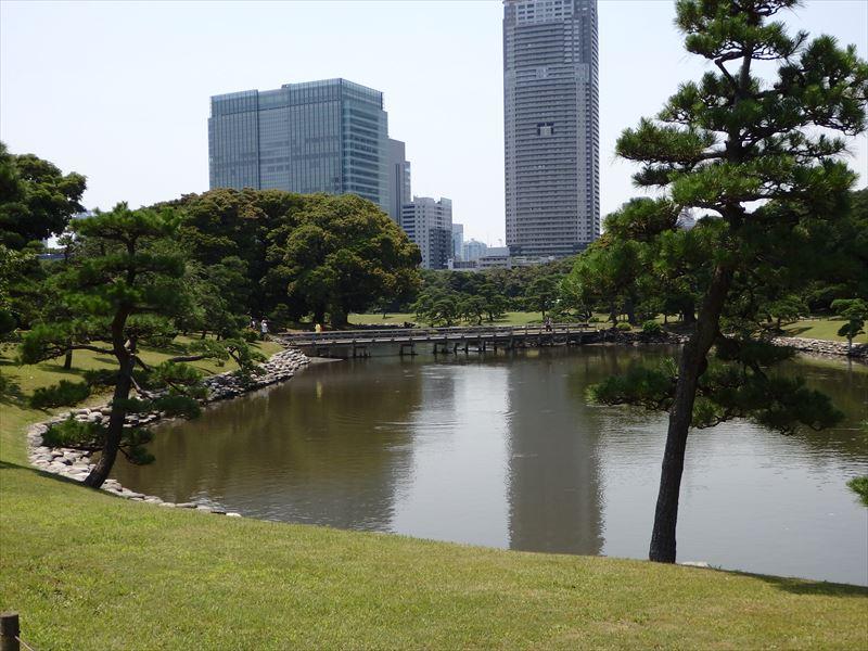 都内で唯一の海水を引き込んだ池