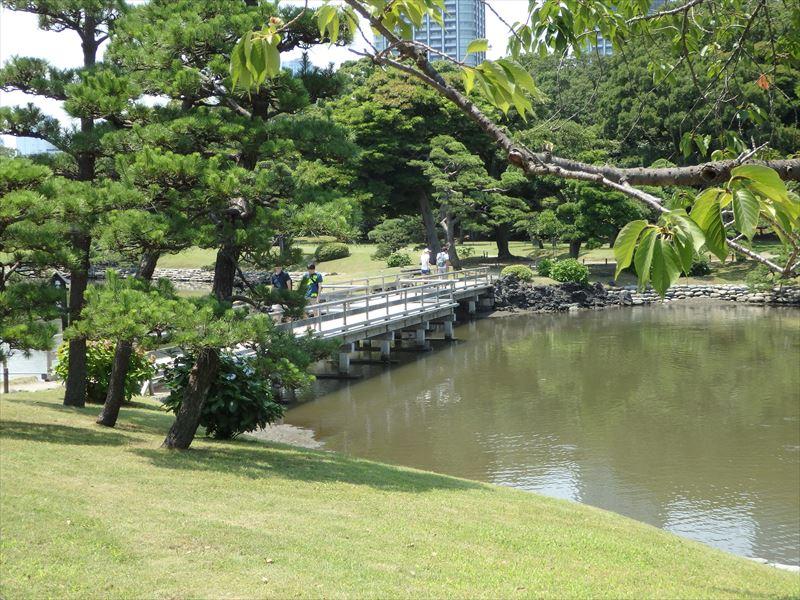 都内で唯一の潮入の池