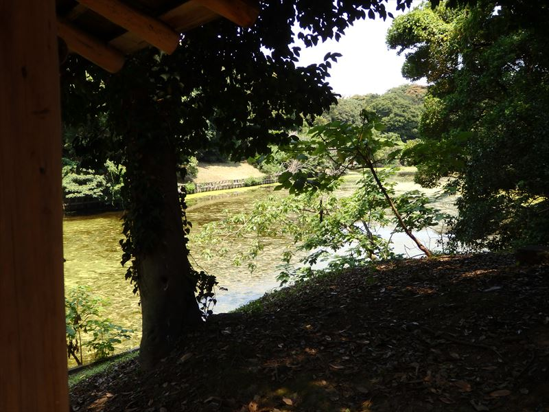 元溜と呼ばれる見えにくいつくりの池