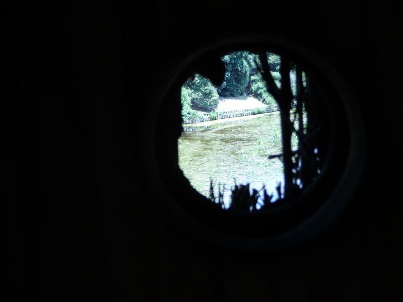 観察所から鳥たちの様子をうかがうところ