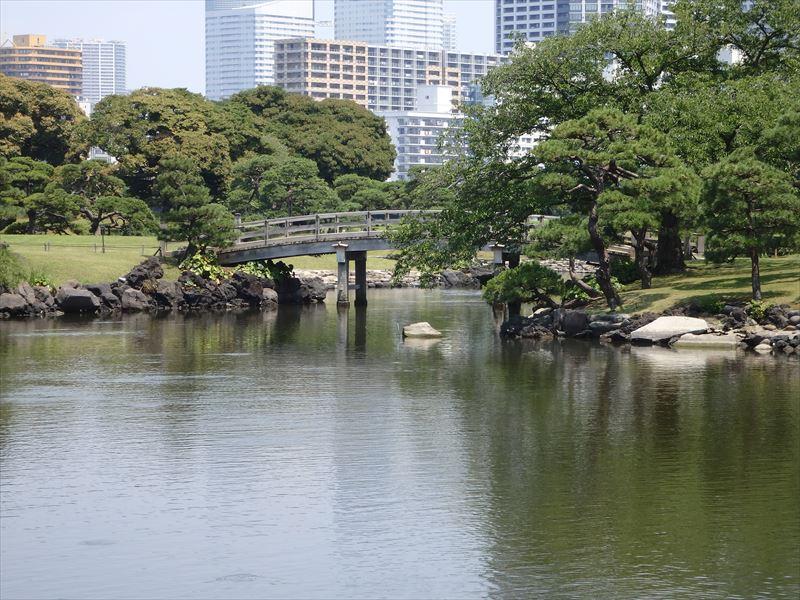橋の途中から見える良い景色