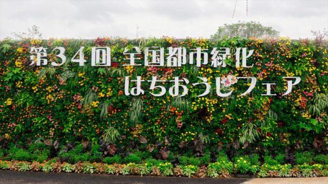 エントランスの壁面緑化