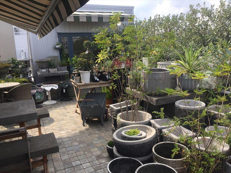 植物が販売されている屋上