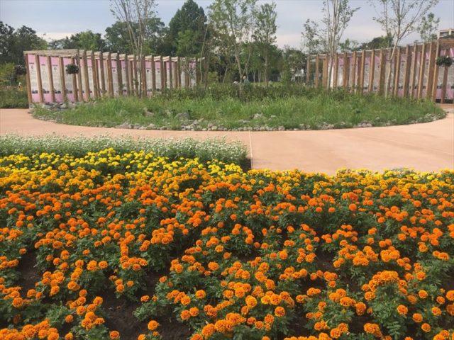 池の周囲の植栽花壇