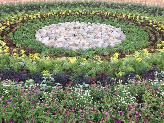 円心花壇のお庭