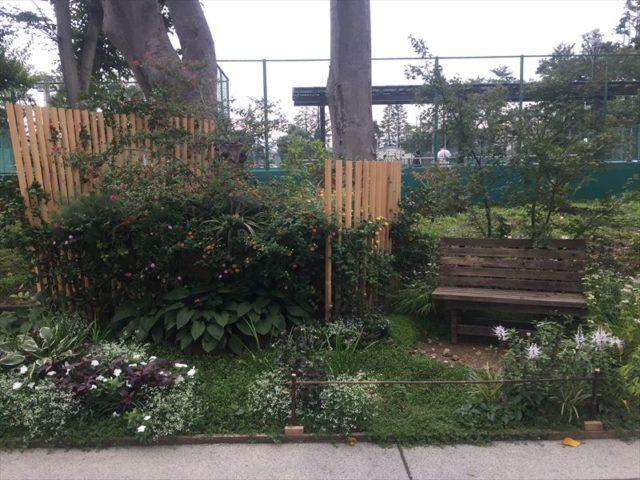 公園のベンチっぽい自然植栽
